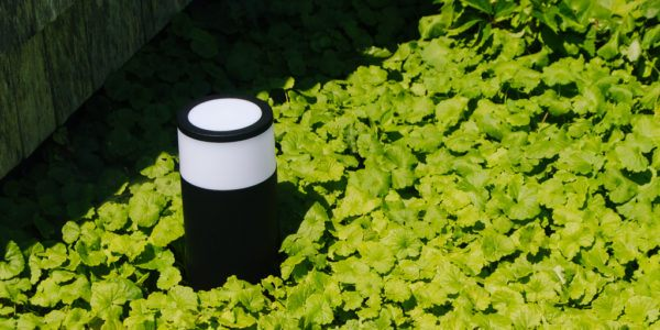 The Best Smart Outdoor Lighting for Backyards, Pathways, and More