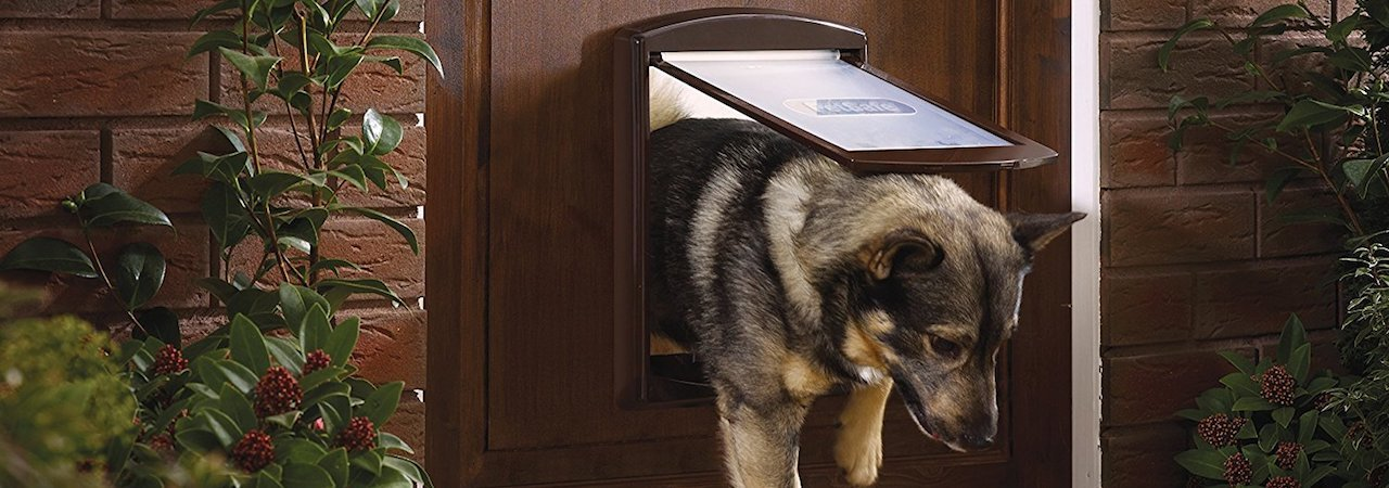 Best Pet Screen Doors For Dogs Amazon