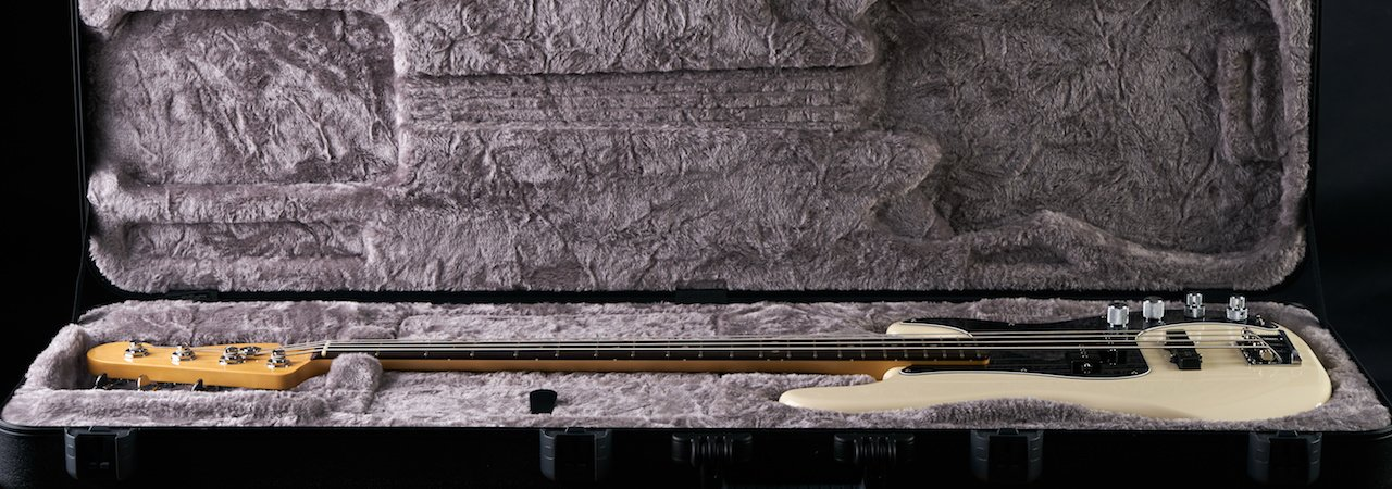 Best Bass Guitar Cases