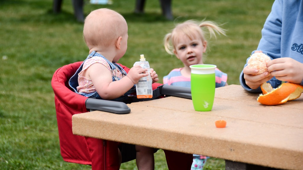 Best Portable High Chair