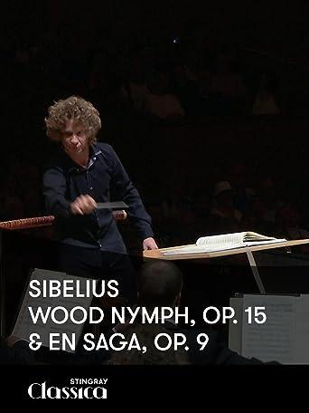 Sibelius - Wood Nymph, Op. 15 und En Saga, Op. 9