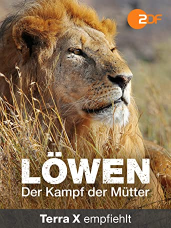 Löwen - Der Kampf der Mütter