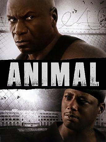 Animal - Gewalt hat einen Namen