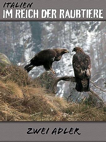 Italien - Im Reich der Raubtiere - Zwei Adler