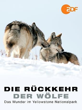 Die Rückkehr der Wölfe - Das Wunder im Yellowstone Nationalpark