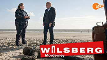 Wilsberg - Morderney