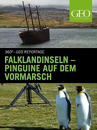 Falklandinseln - Pinguine auf dem Vormarsch