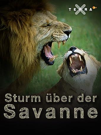 Sturm über der Savanne