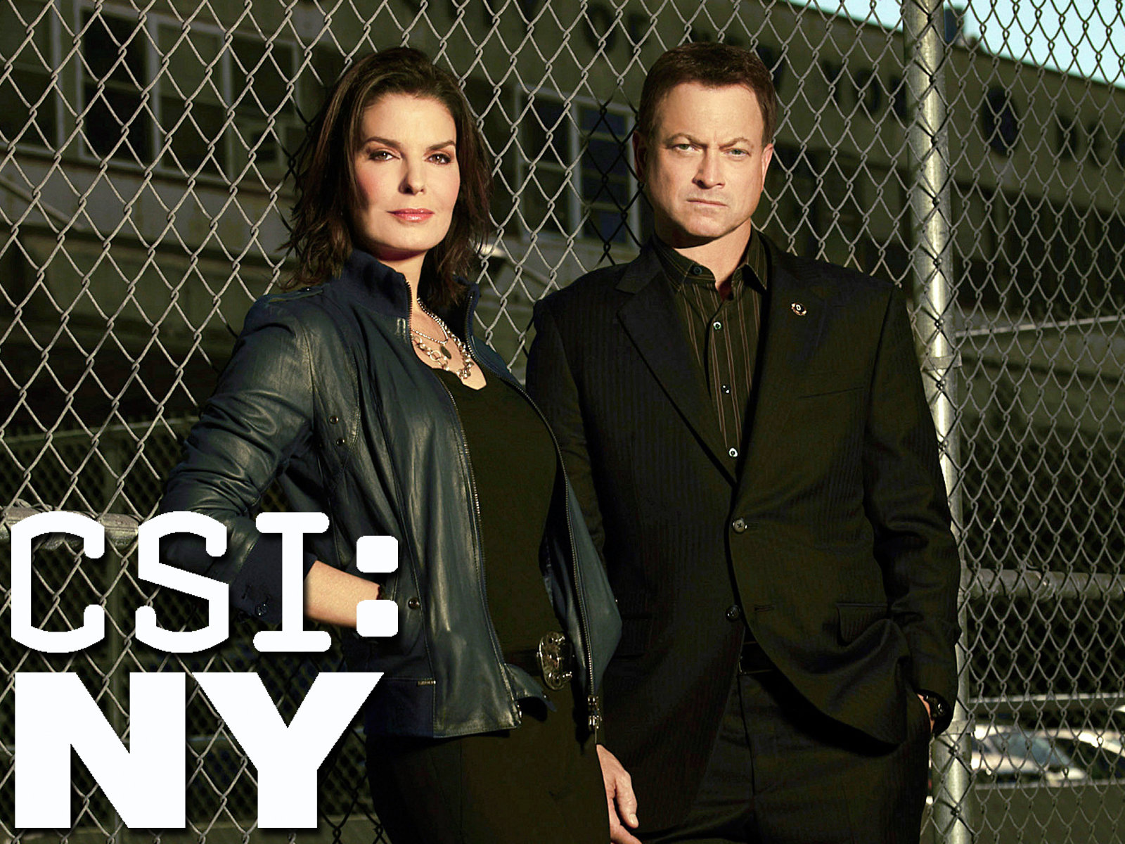 csi ny season 6 torrent