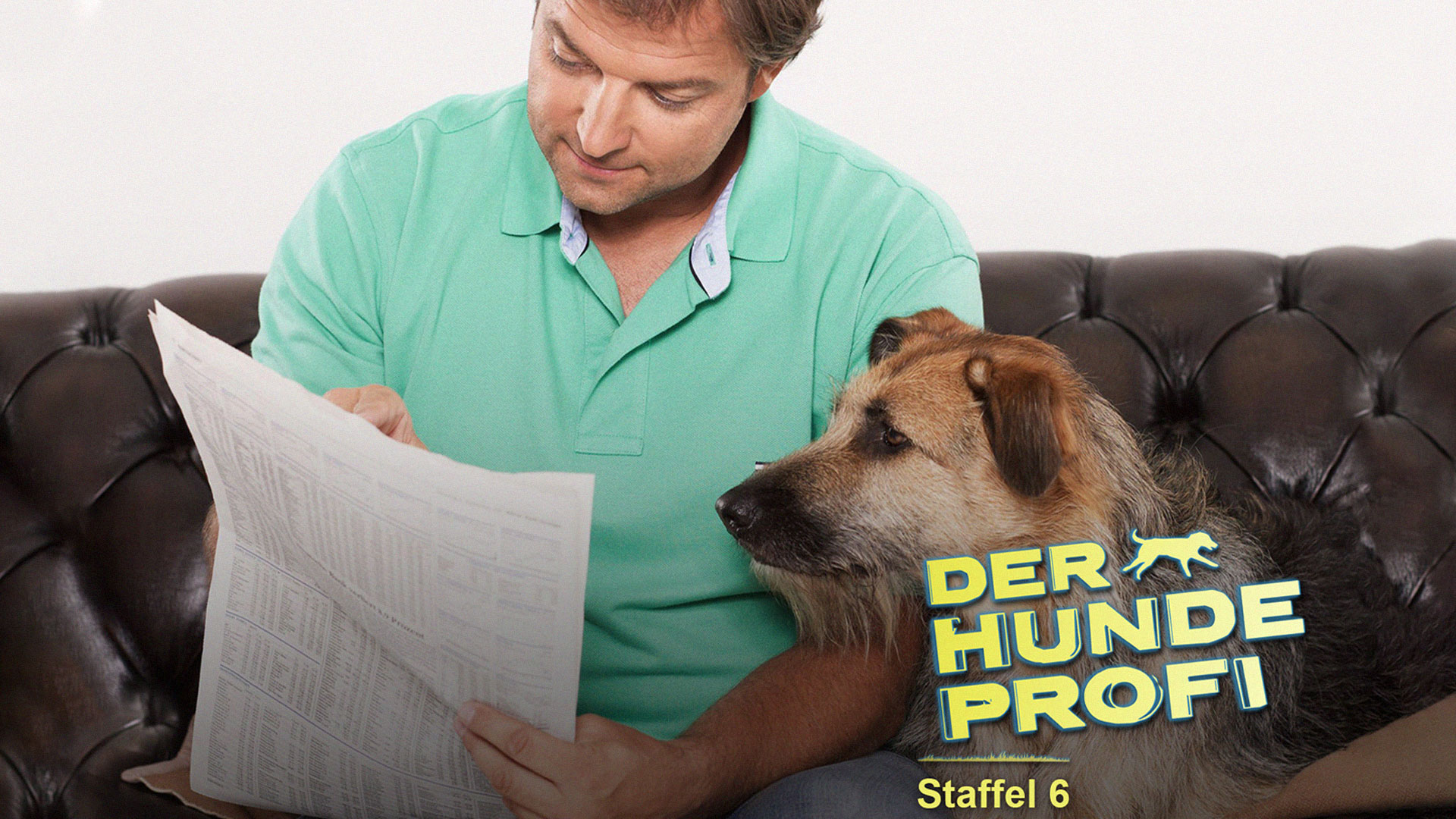 Der Hundeprofi S06e04 Fall Henry Und Fall Joel Fernsehserien De