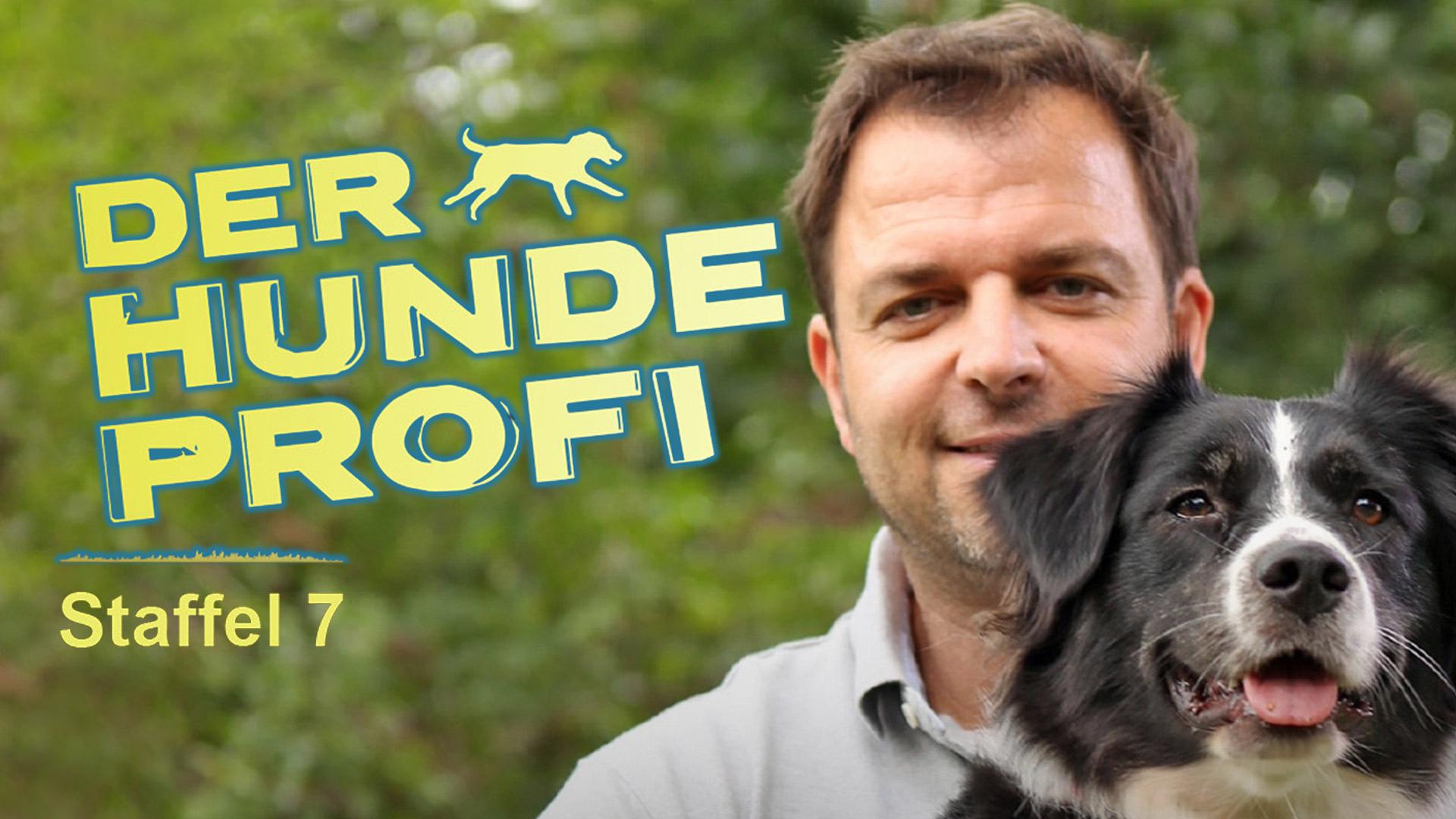 Der Hundeprofi S07e03 Fall Lucy Und Fall Anton Fernsehserien De