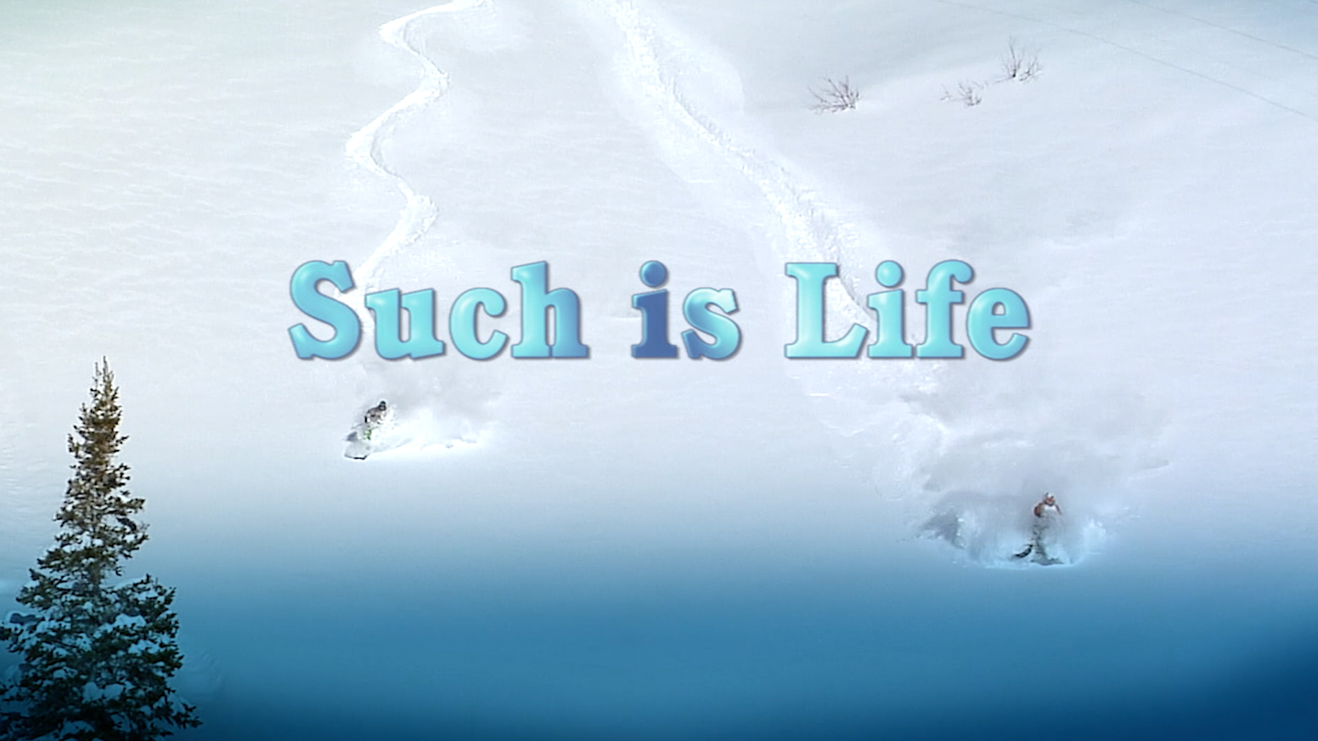 Such is Life [OV]